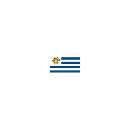 Uruguay Flag X Nylon Quality Flags - Uruguay flag
